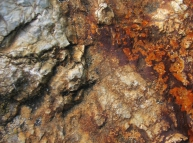 Rusty Color Stone Texture